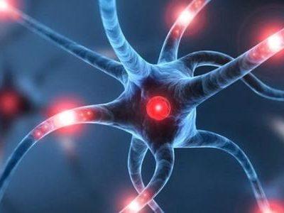 اسباب زيادة كهربة المخ عند الاطفال