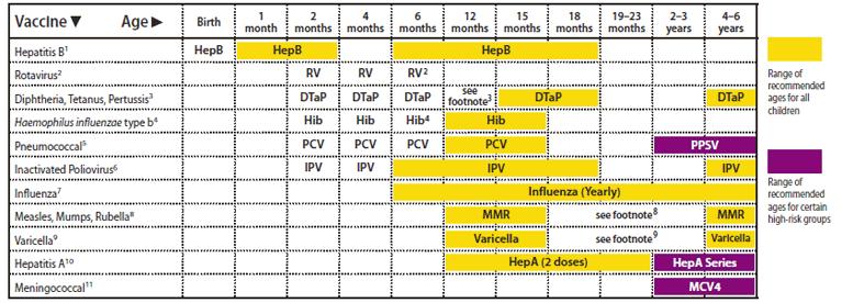 جدول التطعيمات مصر بالانجليزي