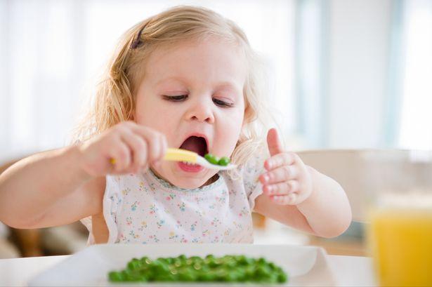 Photo of اسرار تغذية الطفل خلال السنة الثانية من العمر