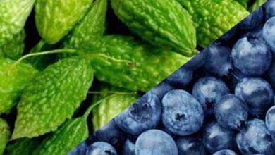 الفاكهة الممنوعة لمرضى أنيميا الفول